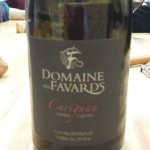 Domaine des Favards - Carignan